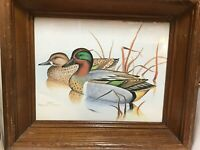 GREGORY F MESSIER PRINT GREEN-WINGED TEAL/ANAS CAROLINENSIS DUCKS IN WOOD FRAME