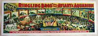 XL Format HiQ Facsimile: 1898 Ringling Bros.Circus Poster~Aviary&Aquarium 36x13