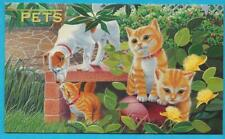 1993 Australia Mnh Stamp Presentation Pack - Pets - Wb48