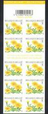 Belgium**Marigold/Flowers/Plants-booklet  10 s/av stamps-2008
