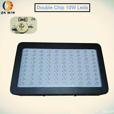 Double chip 10W Led grow light 900W full spectrum hydroponics lighting freeship