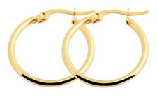 Titanium Titan Ohrhänger Ohrringe Klapp Creolen Kreolen dünne Damen vergoldet 25