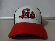 Vtg Melonwear Minor League Baseball Gwinnett Braves Men Adj OSFA Ballcap