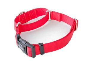 "1 Inch Martingale w/ Buckle Dog Collars - 1"" Width Nylon Dog Collar"