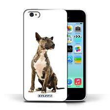 STUFF4 Back Case/Cover/Skin for Apple iPhone 5C/Dog Breeds