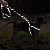 Nylon Reflektierende Hundeleine Einstellbare Geflochtene Zugseil