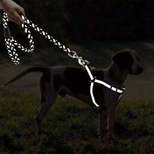 Nylon Reflective Adjustable Training Dog Leash Lead Traction Rope with Harness