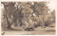 Michigan MI Real Photo RPPC Postcard c1950 PLYMOUTH Riverside Park Picnic