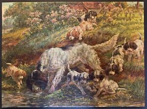 """Vintage TUCO Deluxe Picture Puzzle """"PUPPIES FIRST ADVENTURE""""  Complete 12""""x16"""""""