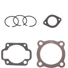 Columbia Par Car-Harley Davidson Golf Cart 2 Cycle PISTON RING, GASKET SET