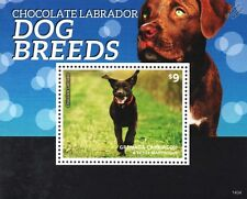 Chocolate Labrador Retriever Dog 1-value Stamp Sheet (2014 Grenada)