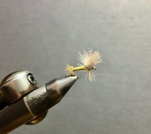 24 Blue Winged Olive BWO Cripple Assortment - Fly Fishing