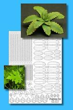 1/35 Scale Greenline - Jungle Pack 5 - laser cut paper plant set