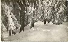 43/CPSM - Champagnac le Vieux - Les bois de sapins en hiver