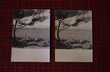 2 photos anciennes Antibes 1953