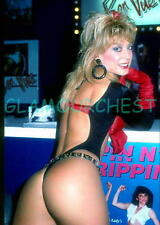 NINA HARTLEY 8X12 original PHOTO 18  ADULT LEGEND