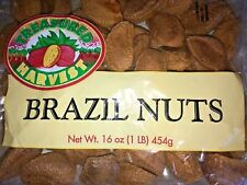 Brazil Nuts in the Shell - 1 lb bag. - Treasured Harvest Brand
