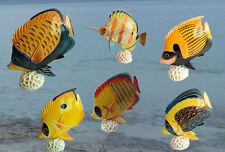 6 Deko Fische exotisch auf Kunst Koralle Figur Korallenfisch Sonderposten OVP