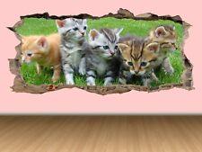 WS19 KITTENS CAT CUTE WALL SMASH 3D WALL ART DECAL sticker boys GIRLS transfer