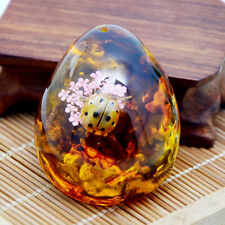 Beautiful Natural Amber Lady Beetle Fossil True Insect Specimens Originality
