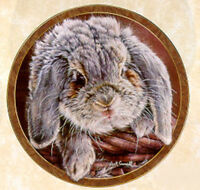 Bunny Tales Collection, by Vivi Crandall, Bradford Exchange Plate, Sweet Cheeks