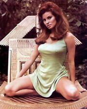 Raquel Welch 1960's & 1970's Screen Siren Amazing Grainy 8.5x11 Photo