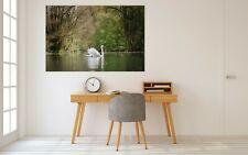 3D White Swan British P68 Animal Wall Stickers Vinyl Wallpaper Mural Wall Zoe