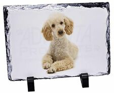 More details for apricot poodle photo slate christmas gift ornament, ad-cp7sl