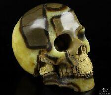 "5.0"" DRAGON SEPTARIAN STONE Carved Crystal Skull, Realistic, Crystal Healing"