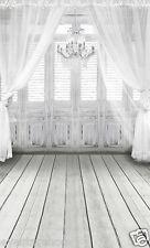 10X20FT vinyl Backdrop Background indoor wedding studio photography props 5594
