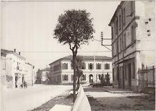 TABELLANO - SCUOLE E MONUMENTO - SUZZARA (MANTOVA) BOZZA FOTOGRAFICA