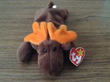 Chocolate Moose TY Beanie Babies RETIRED Mint condition