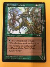 Yavimaya Ancients Alliances MTG Signed Quinton Hoover Silver Signature