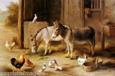 1915 E.Hunt~2 Burros~Donkey~Mules~Chick ens~Pigeons~Farmyard~Barn~ New Note Cards