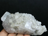Natural Clear Quartz Crystal Cluster Point Wand & Calcite Mineral Specimen
