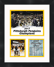 Mario Lemieux 2017 Stanley Cup Pittsburgh Penguins 11x14 Photo Frames By Mail