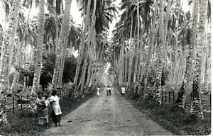 ~1910's WESTERN SAMOA - RPPC - Natives on Road through Tall Trees