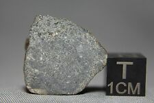 NWA 10228 Feldspathic Lunar Melt Matrix Breccia Meteorite 9.64 gram main mass