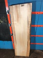 "# 9944   3 1/16"" thick mineral stained poplar Live Edge Slab lumber craft"