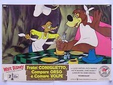 FRATEL CONIGLIETTO COMPARE ORSO COMARE VOLPE animazione Disney fotobusta 1951