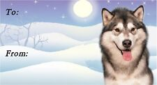 Alaskan Malamute Christmas Labels by Starprint - No 1 - Auto combined postage
