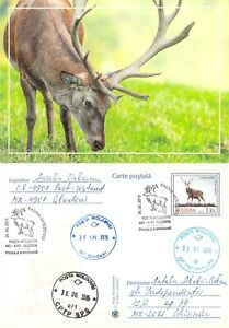 Moldova 2016 PSC with FD Cancel Red deer hunting game