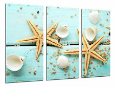 Cuadro Moderno Fotografico Mar Vintage,Estrellas de Mar,97x62cm ref. 26421
