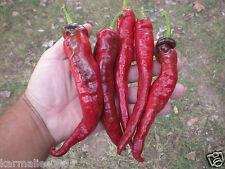 (15+) MONSTER Cayenne Pepper Seeds