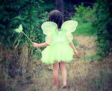 Fairy Princess Costume Tutu Set with Butterfly Fairy Wing and Butterfly Wand