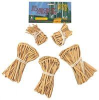 Scarecrow Straw Accessory Set