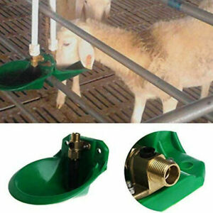 2 x Water Automatic Sheep Drinking Water Bowl Cattle For Pigs Goat Feeder UK