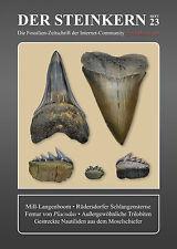 Il nucleo di pietra 23: bordo a triangoli decorati da Mill-serpenti stelle-Placodus-trilobiten