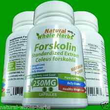 FORSKOLIN Coleus Forskohlii Weight Loss 20% Extract Max 250mg 3 Months Supply