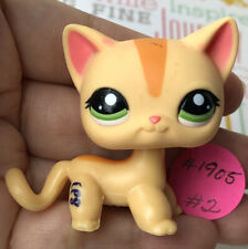 💖🐱AUTHENTIC Littlest Pet Shop SHORTHAIR CAT #1905 +1 Random LPS Orange Green